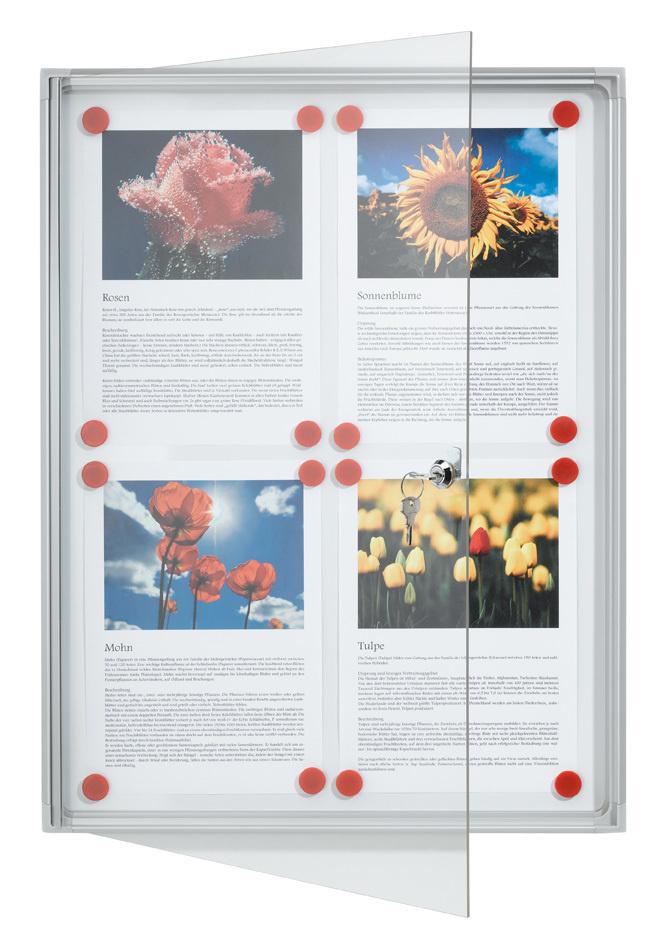 Verkaufspräsentation: Schaukasten X-tra!Line® für 4x A4, 51 x 68 x 3 ...